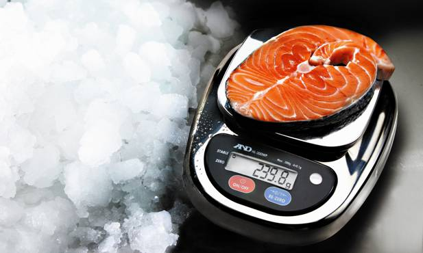 HL-WP Series Professional Catering Scale